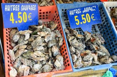 Austern aus Cancale | Copyright: Jacqueline Piriou